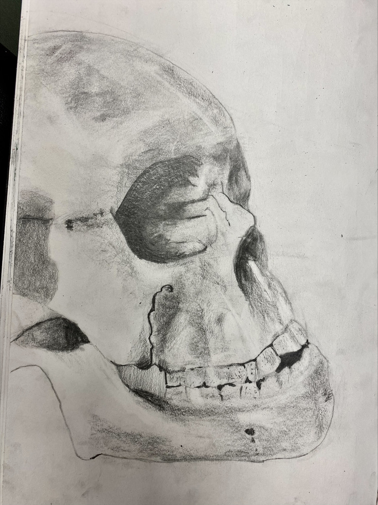 It's just a bunch of hocus pocus 🎃With Halloween just around the corner, Year 8 have been getting a bit creepy in art with some tonal skull drawings 💀We think they are freakishly fantastic 👻 Well done to our spooktacular students 👀