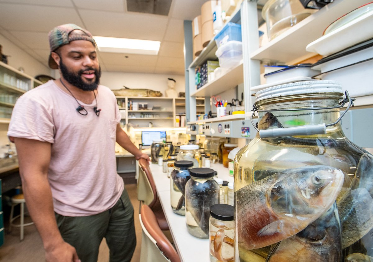 Late to the  #BlackInNHMs #RollCall but nonetheless! My name is Kory Evans, I am an Assistant Professor at Rice University. I study skull shape evolution in fishes and museum collections are ultra important to me.