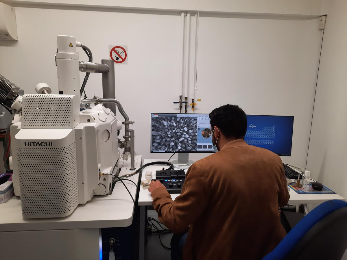 Student looking at grains on the scanning electron microscope