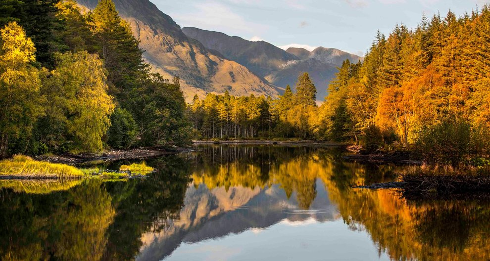 """""""Scotland has an opportunity - now - to plant more new productive forests, or risk being a """"green"""" country at the mercy of future timber shocks, and one that cannot supply timber for its own needs.""""  Well said, @ForestryLS https://t.co/EC8FCZYfsF"""