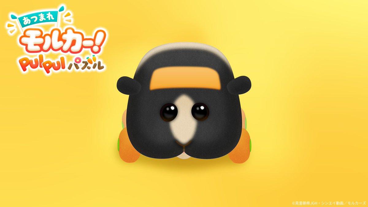 📢先行公開#ぷいパズ のスカンク&リンガーの写真を入手しました📷あなたのお気に入りのモルカーにもきっと出会える✨2021年冬にリリース予定!事前登録はこちら👇