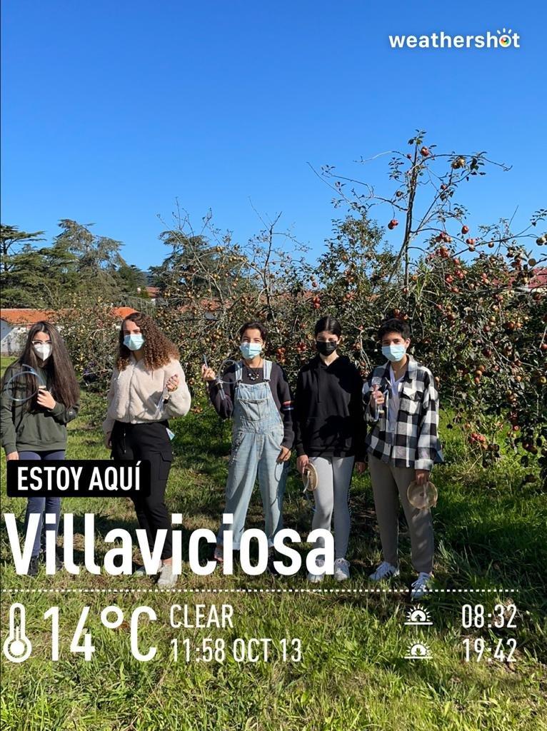 test Twitter Media - Damos la bienvenida a #MelanogasterCTF #CienciaCiudadana @LCATMon @GonzalezLab_BCN @FECYT_Ciencia  a Esperanza Rodríguez y sus estudiantes del #IES @iescorredoria #Asturias y compartimos sus imagenes de la campaña 2021 de colecta y clasificación de #Drosdophila  ¡GRACIAS! 🙌 https://t.co/9sn5nvysKe