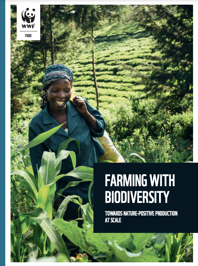 """test Twitter Media - .#ICYMI: the WWF """"Farming with biodiversity"""" report explores the merits of agroecological approaches that can help us secure a nature-positive world.   👉https://t.co/Mkek1vVKSg   @Nachilala @wwfzambia @WWFBetterBiz https://t.co/xp7u92reGk"""