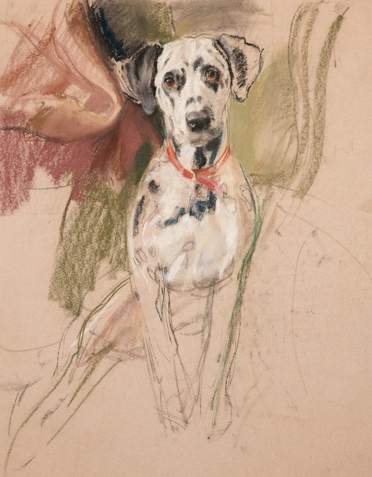 Read about artist Neil Forster's fascinating life and career on the Dogs Monthly website – and find out how actor Rex Harrison responded to having his dog painted by Forster. dogsmonthly.co.uk/2021/10/17/nei…