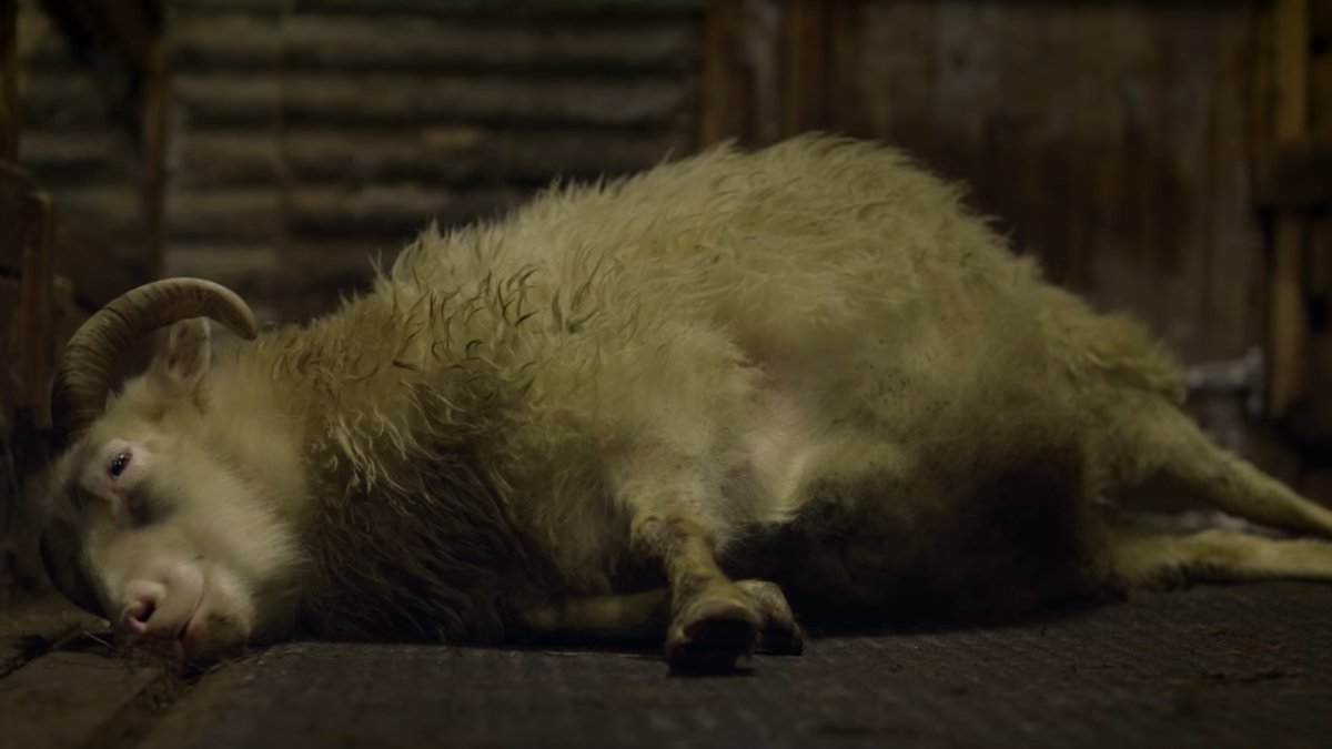 RT @Gizmodo: A24's Deeply Unsettling Lamb Will Stream for One Night Only
