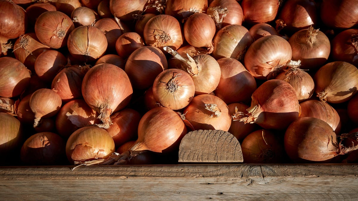 RT @Gizmodo: Onions Sold in 37 States Linked to Salmonella Outbreak in U.S.
