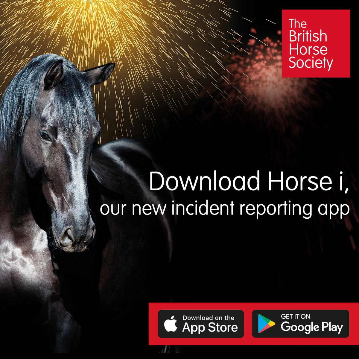 We have help and advice for equestrians during fireworks season in the link. If you're an equestrian and you've not downloaded our incident reporting app yet, look on the app store or google play under 'Horse i' and download today. Pls RT bhs.org.uk/advice-and-inf…