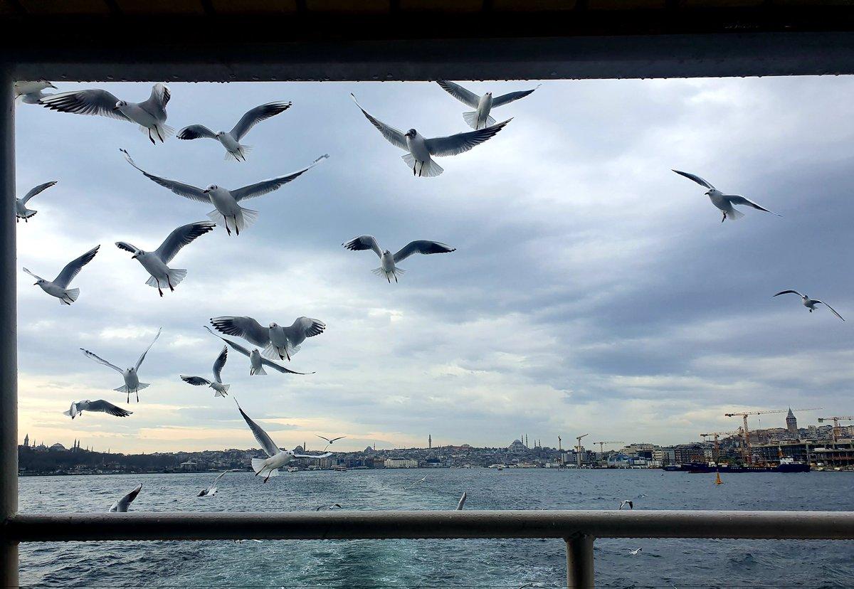 #throwback Istanbul