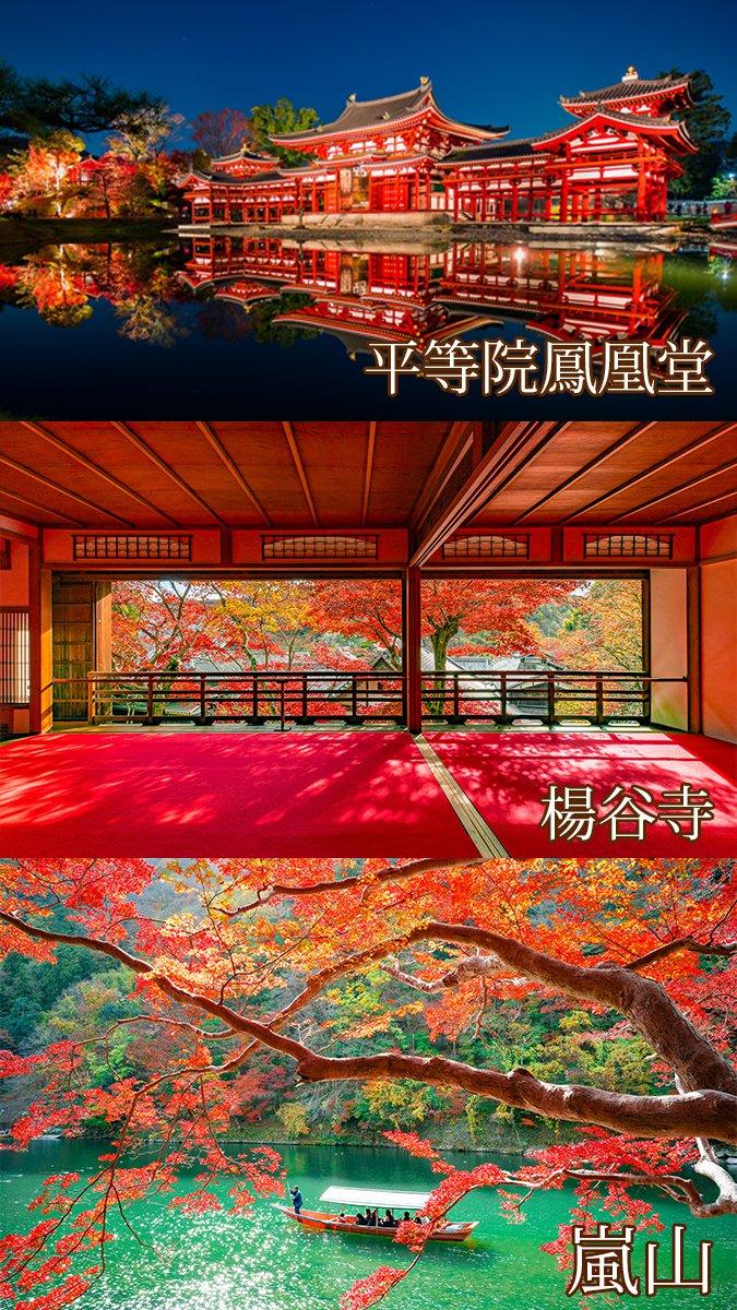 京都の秋は世界で一番美しいと思う。まさに、極彩色の京都。