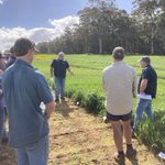 With Manjimup Pasture Group at DPIRD pasture trials with Gus and Tim O'Dea