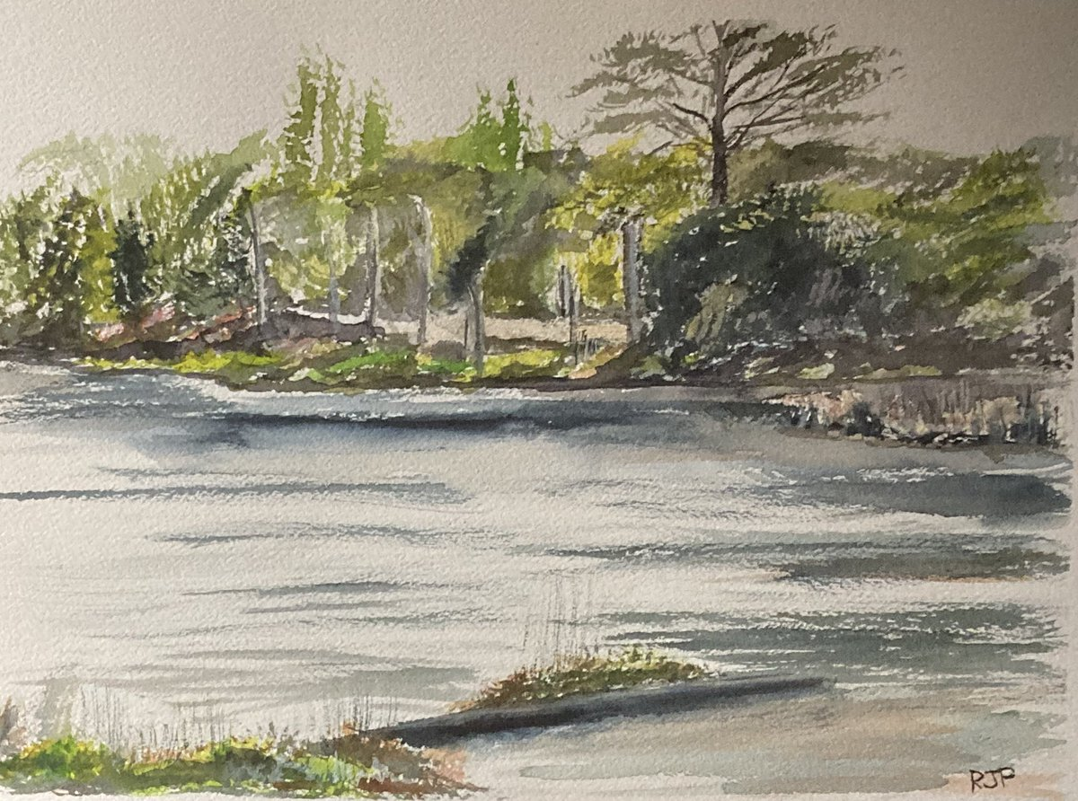 """Somewhere closer to home.  14"""" x 10"""" watercolour,Thornton Water, Leicestershire. #watercolour #art #nature #Thornton #leicestershire"""