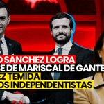 Image for the Tweet beginning: ‼️ Se reparten las instituciones