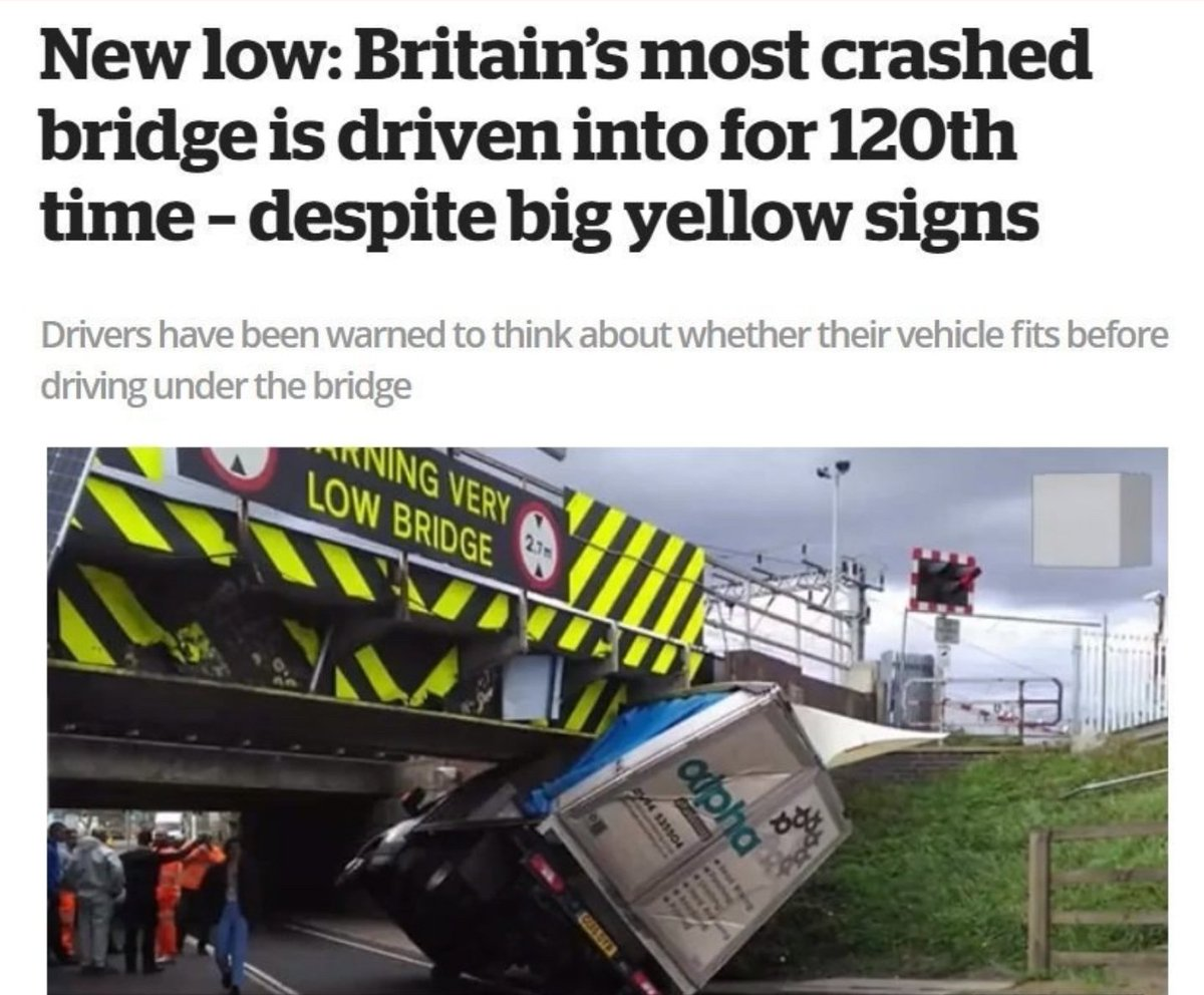 I hope these children aren't being led to believe that hi-viz will ensure bad drivers avoid mowing them down