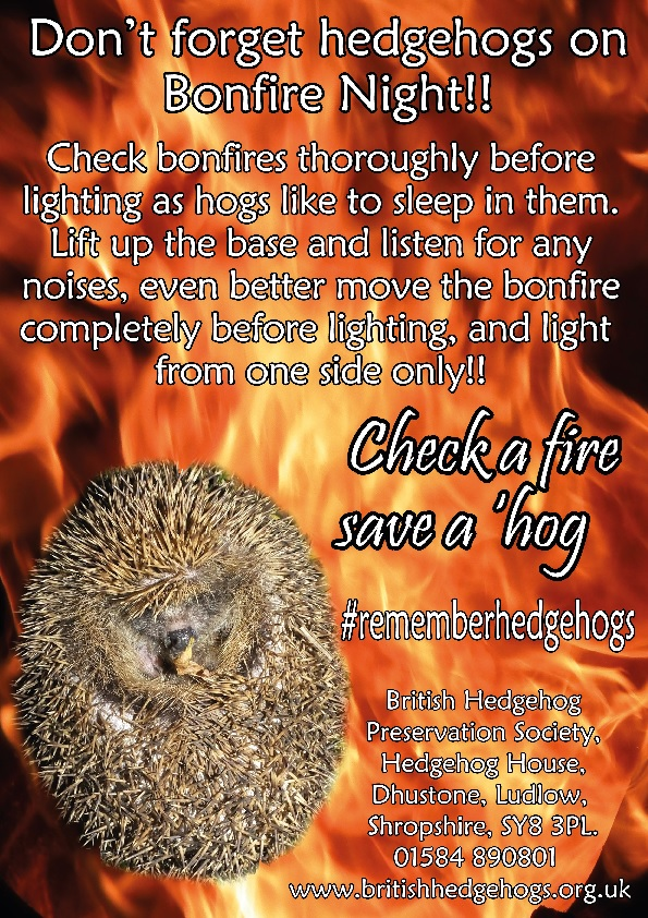 #bonfirenight will soon be here - please #rememberhedgehogs and please share to encourage friends to look out for them too.