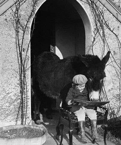 if you're reading a book and a mysterious creature comes up and starts reading beside you... you've been blessed by the Book Beast