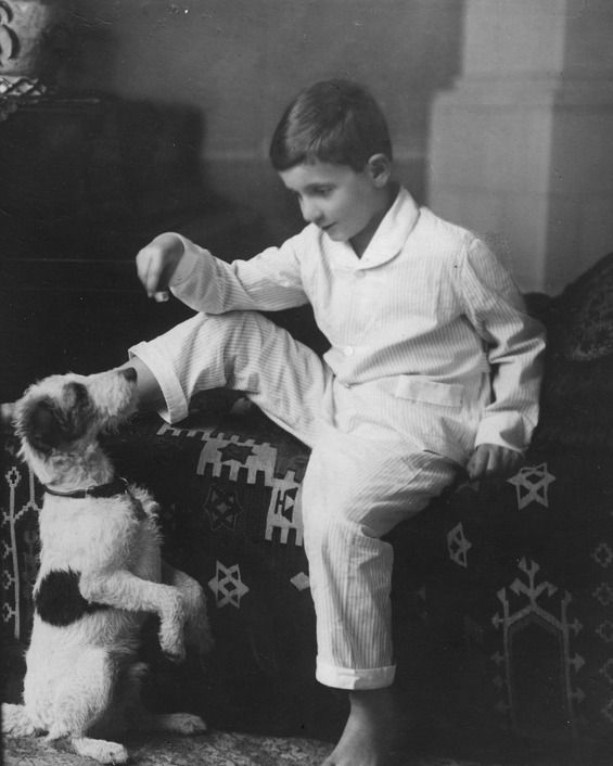 #TodayILearned the @ucsdlibrary's digital collection features adorable images of dogs. This photo shows Walter Munk, distinguished physical oceanographer & professor of geophysics @Scripps_Ocean, as a child with his dog: bit.ly/3l8dkTK. #tilucsd #adoptashelterdogmonth