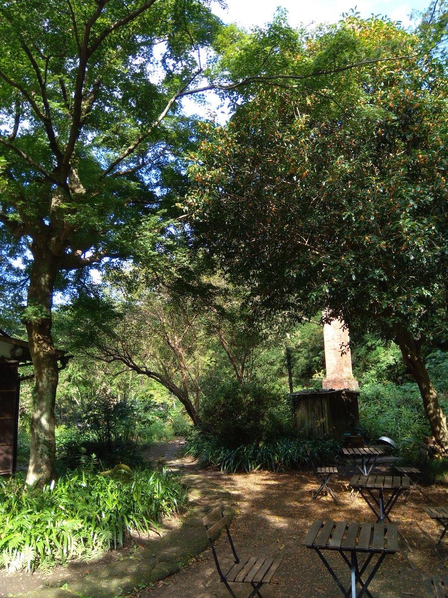【東京・成城 11月7日】アトリエシムラ5周年を記念し、成城を飛び出してお出かけワークショップを開催いたします!会場は「北鎌倉たからの庭」。谷戸の自然に囲まれた静かなお庭で、ゆったりと半日をお過ごしください。午前コース:午後コース: