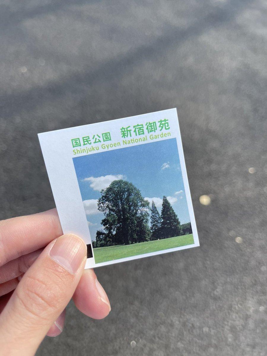 test ツイッターメディア - 友達とノリで、新宿御苑にポケモンGOしにきた!笑 https://t.co/vOt18FIMBK