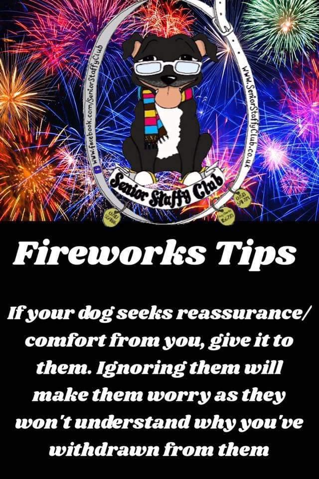 The start of our tips ahead of #bonfirenight this year #seniorstaffy #TeamZay #StaySafe