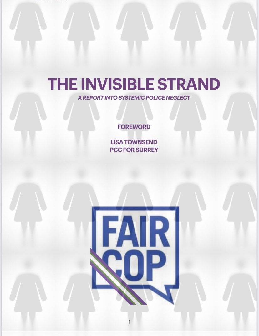 How did we get into this mess, where noble efforts to combat 'hate' have made misogyny hard baked into policing? And how do we get out of this?   Report now out. #TheInvisibleStrand   faircop.org.uk/wp-content/upl…