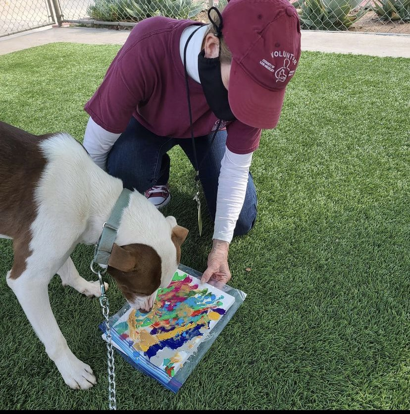 .@LACoAnimalCare is showing off their pups' skills in honor of Pawcasso Day! If you adopt a dog, you'll get their adorable artwork to take home with you and your new furry friend. #InternationalArtistDay