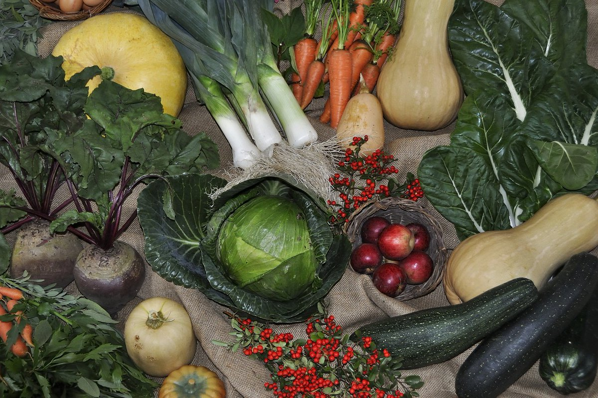 No excuse for a #healthy diet - in season now beetroot, broccoli, cabbage, cauliflower, celery, courgettes, cucumber, endive, Jerusalem Artichoke, kale & leeks. Visit @HaddingtonFM on Sat 30th Oct for a wide range of local #food #drinks #gifts