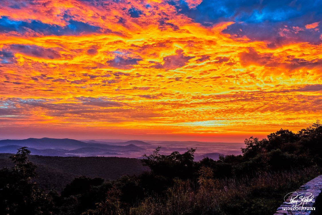Got to #shenandoahnationalpark early and lucky to shoot a #Photo of a wonderful #sunrise with the #blueridge mountains foothills.  The #sky was a bright, beatiful red with lots of orange and blue. #Virginia #landscape #photography