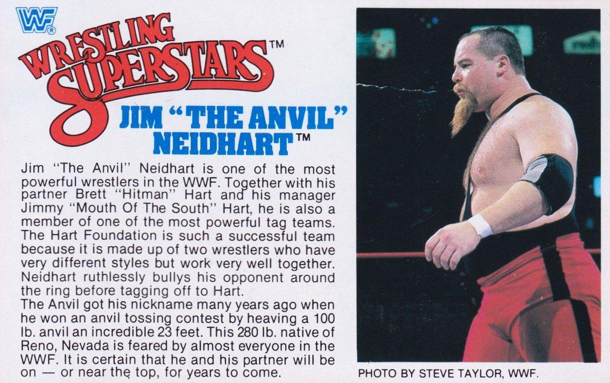 "WWF LJN wrestling superstars bio card for the Jim ""The Anvil"" Neidhart action figure. #WWE #WWFWrestling #Wrestling #WrestlingFigures #LJN #JimNeidhart"