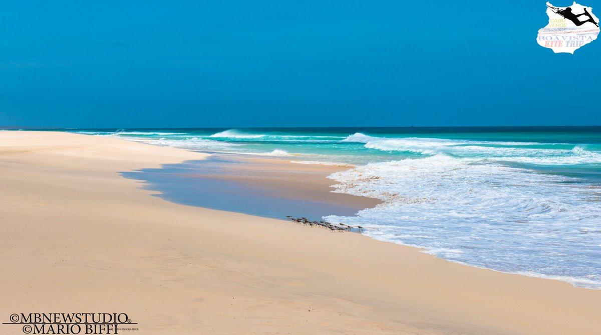 #pirates #kites #CaboVerde #Boavista #birdfly #oasis #palms #westafrica #surf #wave #photo #pic  #photographer #landscape #photography #photographer #photooftheday #desert  #sea #seaphoto #desertpic #sand #sun #dunes  #shore #bird #viaggi #travel #mare