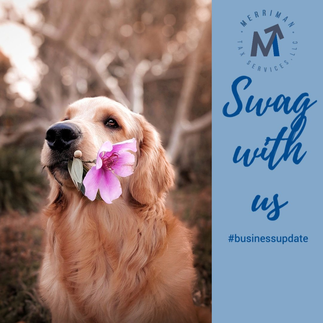 We are looking to update our business SWAG merch and looking for your opinions!   What is your favorite swag item to get from your local Small Business???    Do you have a #fave of ours? #stickers #totebags #coffeemugs   #swag #businessupdate