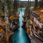 Image for the Tweet beginning: Beautiful blues of the Athabasca