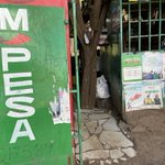 """Just had my first """"being a tourist in Nairobi"""" experience: seeing my first #mpesa kiosk! The epitome of grassroots payments innovation, set the stage for bitcoin, truly worthy of a permanent exhibition in the @MuseumOfMoney h/t @MPESAFdnAcademy @MPESA_FDN"""