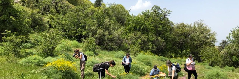 Biodiversity Conservation Initiative - Lebanon by @FS_USJ and @Jouzourloubnan @magdaboudagher