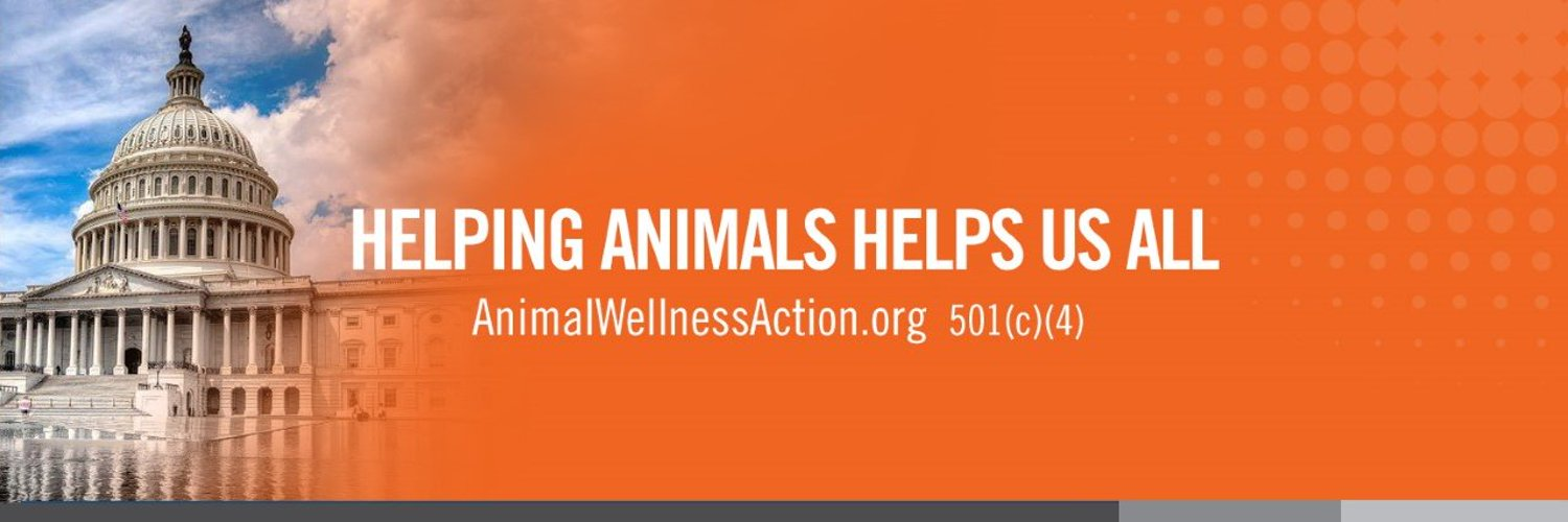 Helping animals helps us all. To prevent cruelty to animals, we promote enacting and enforcing good public policies and electing good leaders.