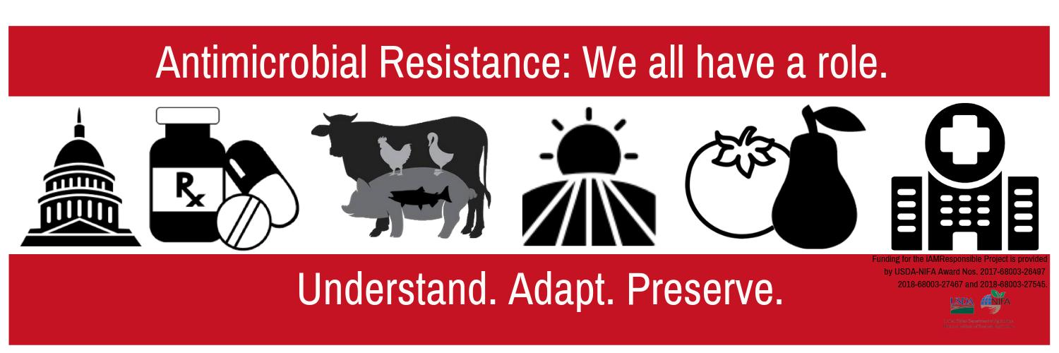 We are a nation-wide team of researchers seeking solutions to #AntimicrobialResistance. We believe everyone has a part to play to find and implement solutions.