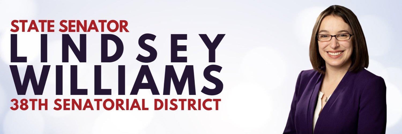 Pennsylvania State Senator District 38