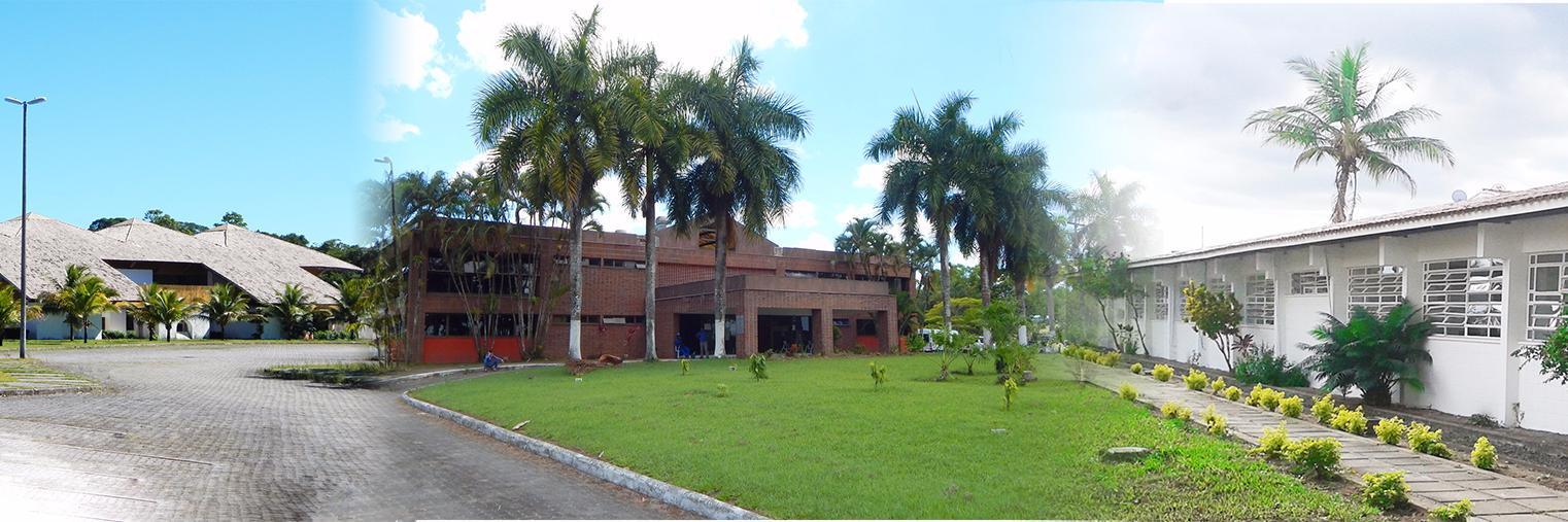 Universidade Federal do Sul da Bahia's official Twitter account