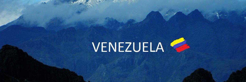 #Venezuela 🇻🇪 se une al movimiento universal de jóvenes, que luchamos en contra del cambio climático en nuestro Planeta. @GretaThunberg #FridaysForFuture