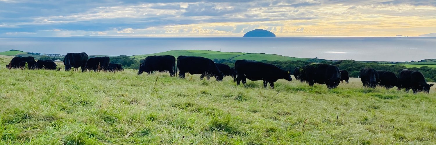 Tweets by Heather. 100% grassfed beef from AA & OP Herefords, mob-grazed and outwintered in soggy SW Scotland. Always learning from nature. balsarglen.com