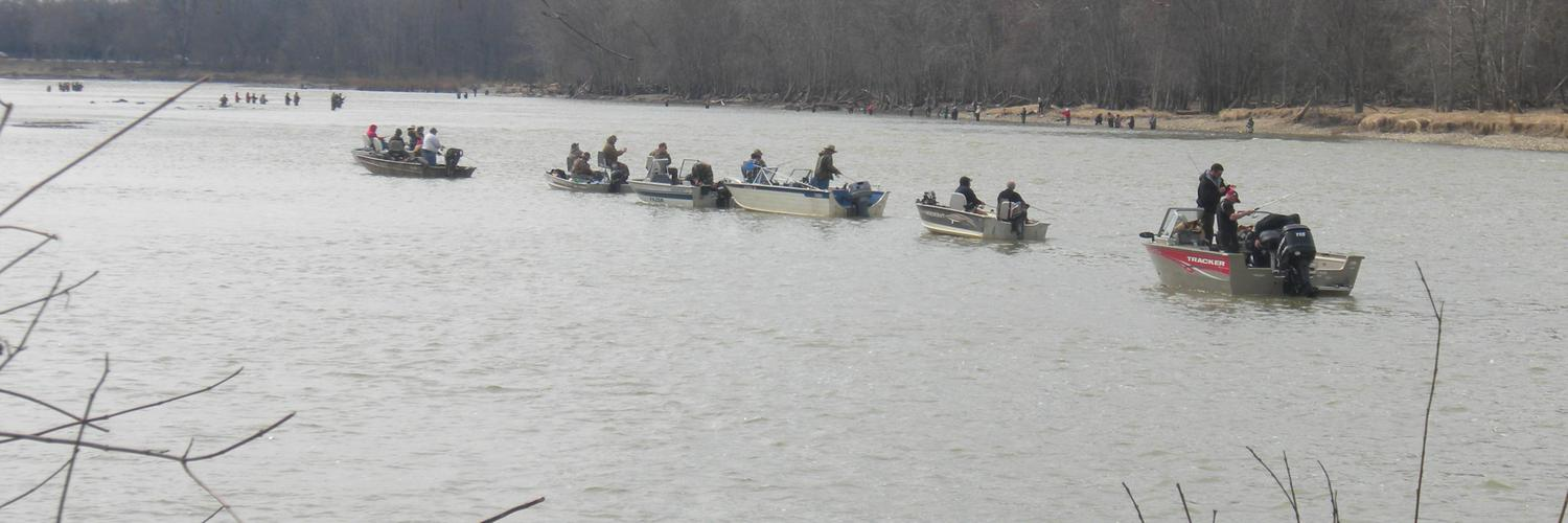Maumee river report maumee river twitter for Maumee river fishing