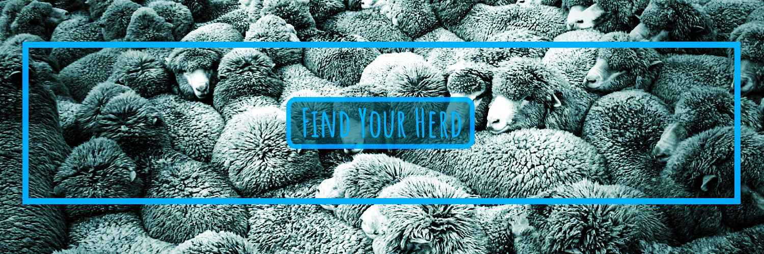 Social Media Management made affordable for small businesses. Keep it local. Keep it social. 🤙🏼 #FindYourHerd 🐑