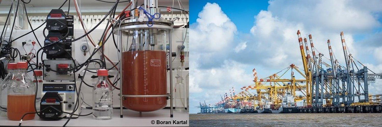 Senatorin für Wissenschaft und Häfen der Stadt Bremen