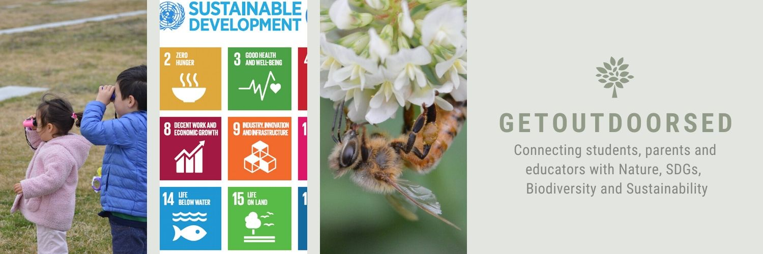 Connecting children, parents and educators around the world with Nature and the Outdoors. Teaching #biodiversity #SDG #Sustainability #health Also @madformaple