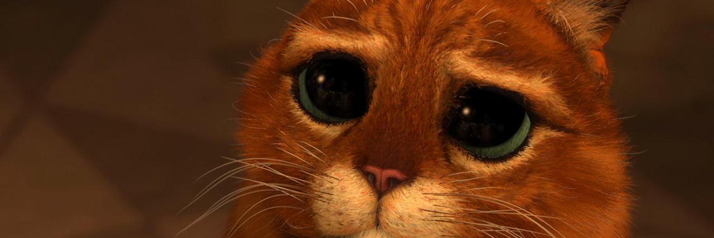 Гифка кота из шрека с грустными глазами