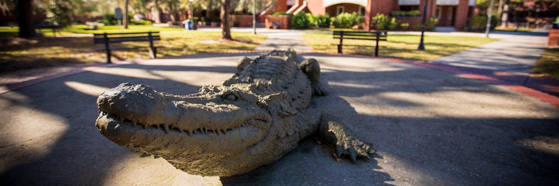 University of Florida Office of Graduate Professional Development. Mission: Graduate Student Success.