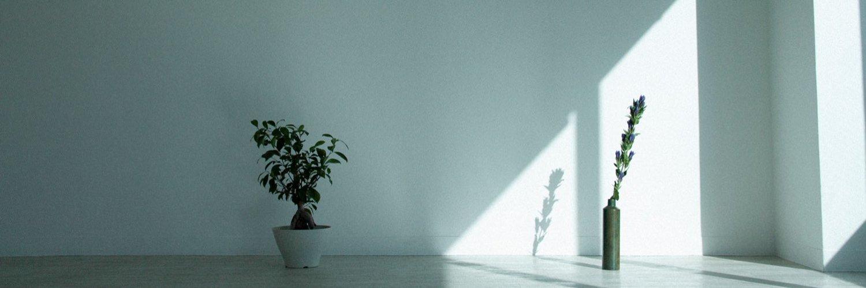 <中国語音声・日本語字幕版> 🐾ドリパス上映実施決定!🐾 __________________________ #羅小黒戦記 #ロシャオヘイセンキ <中国語音声・日本語字幕版 > ※初期字幕版が4/11(日) TOHOシネマズなんばにて 実施決定❗️ ⬇️詳細はこちら⬇️ dreampass.jp/e3092