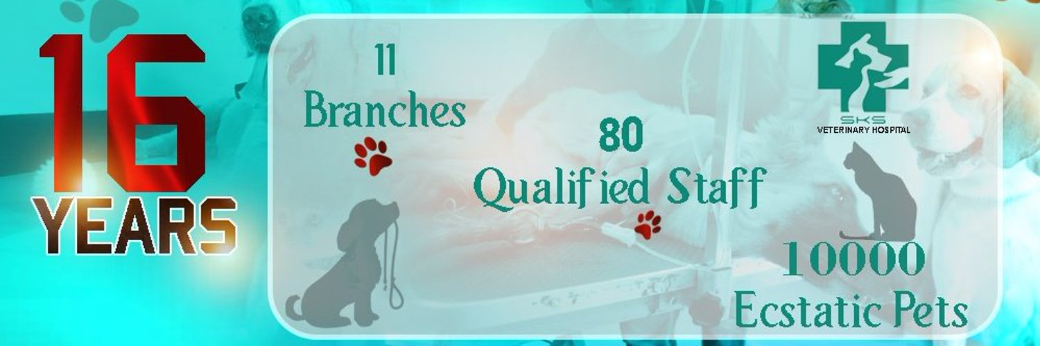 Providing professional pet care services with utmost care. Your pet......our care