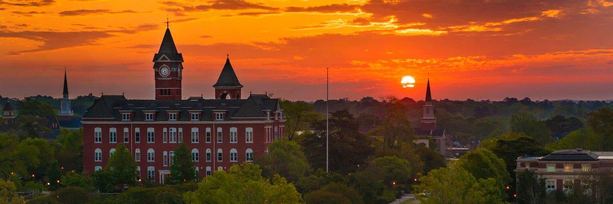 Auburn University's official Twitter account