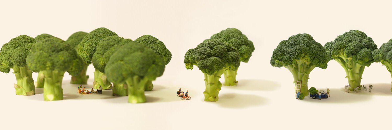 I make miniature art every day./2021年カレンダー発売中 amazon.co.jp/dp/B08F52D18Q / ミニチュアライフ展 miniature-calendar.com/exhibition /Instagram instagram.com/tanaka_tatsuya/