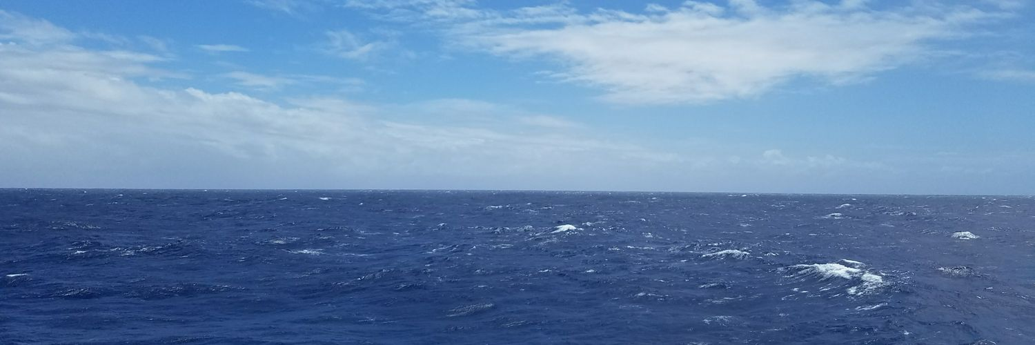 Physical oceanographer, mom, Cuban American. I study ocean currents in our changing climate. I love the sea. Tweets, RTs, and opinions are my own. She/her/hers.